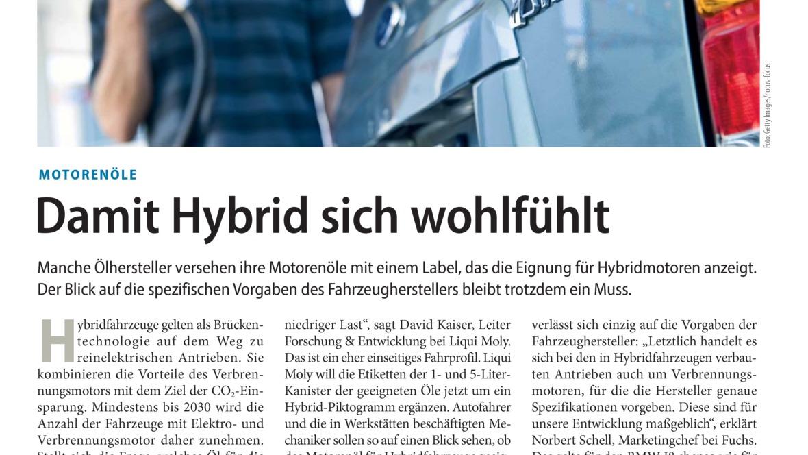 Damit Hybrid sich wohlfühlt