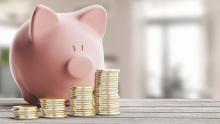 Sparschwein; Budget, sparen; Geldbeutel, Kaufbereitschaft